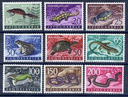 YUGOSLAVIA 1962 Amphibians And Reptiles  MNH / **.  Michel 1007-15 - 1945-1992 Socialist Federal Republic Of Yugoslavia
