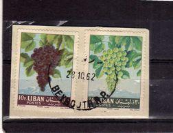 LIBANO LEBANON LIBAN 1962 FRUIT GRAPES UVA 10p + 30p USATO USED OBLITERE' - Libano