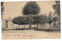 Westerloo. - Marktelinde. 1905 - Westerlo