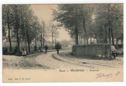 Rond - Westerloo - Environs  Nr 4643 Edit. F.De Coster - Westerlo
