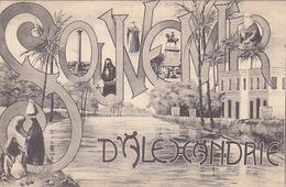 Souvenir D'Alexandria - 1906    (A-64-161117) - Alexandria