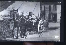 GEMENE  PENFAO ATTELAGE DE JOSEPH 1950              NEW   TRAITS ANTI COPIE - Guémené-Penfao