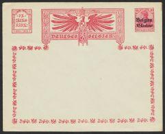"""Belgien, PU 3 D2, """"Adler Mit Inschrift"""", Selten Angeboten, * - Besetzungen 1914-18"""