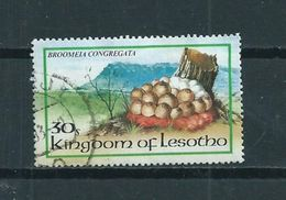 1983 Lesotho Pilze,mushrooms Used/gebruikt/oblitere - Lesotho (1966-...)