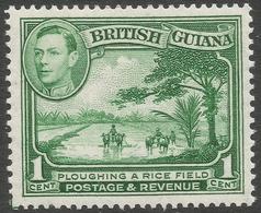 British Guiana. 1938-52 KGVI. 1c MH. P14X13 SG 308ab - British Guiana (...-1966)