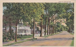 Massachusetts Cape Cod Typical Village Street Curteich - Cape Cod