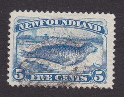 Newfoundland, Scott #53, Used, Harp Seal, Issued 1880 - Newfoundland