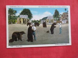 Bears Old Pigeon Ranch Thos L. Greer Mgr. Glorieta Pass NM ====ref 2809 - Bears