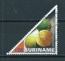 2000 Suriname 200 Gulden Grapefruit Used/gebruikt/oblitere - Suriname