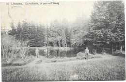 Lierneux NA5: La Colonie, Le Parc Et L'étang 1912 - Lierneux