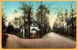 Bussum - Zwarte Weg Hoek. Floralaan - Uitg. NAUTA - 1913 - Oblit. BUSSUM Vers ALPERDOORN - Bussum
