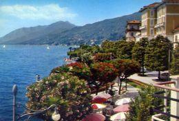 Lago Maggiore - Palanza - Verbiana - Giardini - 68 - Formato Grande Non Viaggiata – E 4 - Verbania