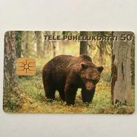 Bear - Finland