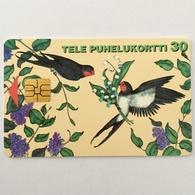 Birds - Finland
