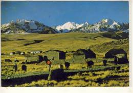 BOLIVIA ALTIPLANO BOLIVIANO CON LA CORDILLERA DE LOS ANDES - Bolivie
