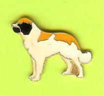 Pin's Chien - 3AA16 - Animals