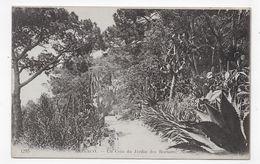 (RECTO / VERSO) MONACO - N° 1295 - UN COIN DU JARDIN DES ROCHERS - TIMBRES DE MONACO - CPA VOYAGEE - Prince's Palace