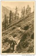 74 CHAMONIX. Argentière. Chemin De Lognan Rentrée Des Foins - Chamonix-Mont-Blanc