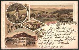 Lithographie Steinen, Gasthaus Zum Ochsen, Ehemal. Kloster Weitenau, Schlösschen Steinen Und Ortsansicht - Germania