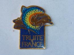Pin's TRUITE DE France  02 - Animals
