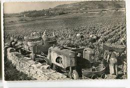 Vendanges En Bourgogne Tracteur Vigneron Double - Bourgogne