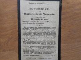 D.P.-MARIE OCTAVIE VEEVAETE °KNESSELARE 13-1-1878+BEERNEM 12-4-1914 - Religion & Esotericism