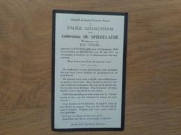 D.P.-AMBROSIUS DE SPIEGELAERE °KNESSELARE 10-12-1838+BEERNEM 30-7-1931 - Religion & Esotericism