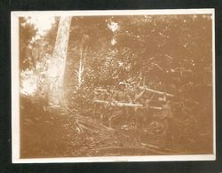 Photo Sépia Moyen - Congo -- Piste Sibiti - Loudima 1926 --  GONGO - Africa