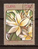 1984 - Flore Des Caraïbes ''Plumieria Alba'' - N°2536 - Cuba