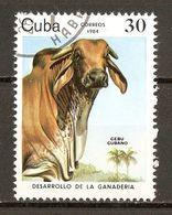 1984 - Développement De L'élevage - Zébu Cubain - N°2573 - Cuba