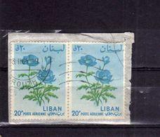 LIBANO LEBANON LIBAN 1964 AIR MAIL POSTA AEREA AERIENNE FLORA FLOWERS FLEURS FIORI ANEMONE 20p USATO USED OBLITERE' - Libano