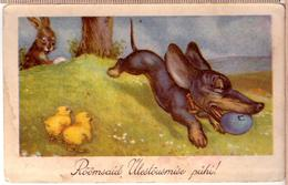Dachshund Puppy And Chick. ~ 1935 Printed In Estonia POSTCARD - Chiens