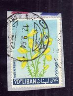 LIBANO LEBANON LIBAN 1964 AIR MAIL POSTA AEREA AERIENNE FLORA FLOWERS FLEURS FIORI YELLOW BROOM 70p USATO USED OBLITERE' - Libano