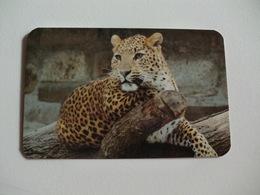 Maia Zoo Leopardo Portugal Portuguese Pocket Calendar 1989 - Small : 1981-90
