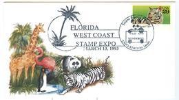 1993 Florida West Coast 13.03.1993 Panda Palm Tree Bengal Tiger Wild Life - Poststempel
