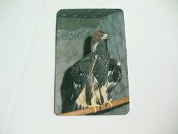 Maia Zoo Águia Impéria Portugal Portuguese Pocket Calendar 1988 - Small : 1981-90
