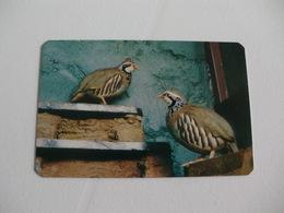 Maia Zoo Perdiz Portugal Portuguese Pocket Calendar 1987 - Small : 1981-90