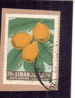LIBANO LEBANON LIBAN 1964 AIR MAIL POSTA AEREA AERIENNE FRUIT APPLES MEDLAR NESPOLE 70p USATO USED OBLITERE' - Libano