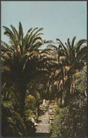Palm Trees In Tresco Abbey Gardens, Isles Of Scilly, C.1970s - Jarrold Postcard - Scilly Isles