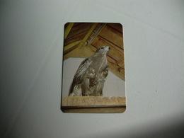 Maia Zoo Buteo-Buteo Portugal Portuguese Pocket Calendar 1986 - Small : 1981-90