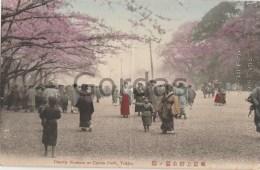 Japan - Tokyo - Cherry Blossom At Uyeno Park - Damaged, Bent Postcard - Tokio