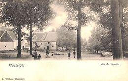 Wasseiges - Vue Du Moulin (L. Willem, Animée, Précurseur, RARE) - Wasseiges