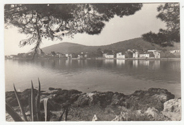Preko Old Postcard Travelled 1958 B180103 - Croatie