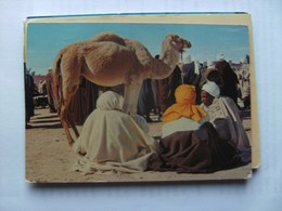 Tunesië Tunisie Tunesia South Marché Camel Market - Tunesië