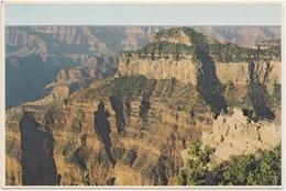 Grand Canyon National Park, Arizona, Bright Nagel Point, North Rim, Unused Postcard [20817] - Grand Canyon