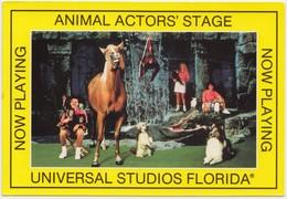 ANIMAL ACTORS' STAGE, UNIVERSAL STUDIOS, FLORIDA, Unused Postcard [20818] - Animals