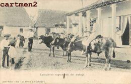 LABRADORES REGRESANDO DEL TRABAJO GUADALAJARA MEXIQUE 1900 - Mexico
