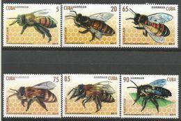 Cuba 2017 Bees 6v MNH - Cuba