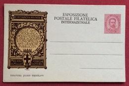 CARTOLINA POSTALE COMMISSIONE PRIVATA ESPOSIZIONE POSTALE NUOVA - Storia Postale