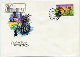 UZBEKISTAN 1992 Butterfly On FDC - Uzbekistan